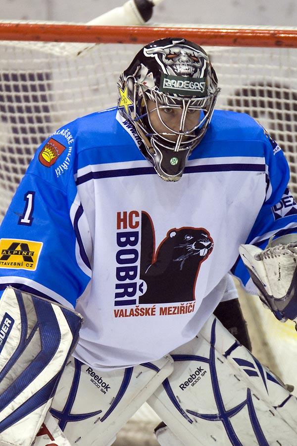 Aukce hokejových dresů 1d0ce20feb